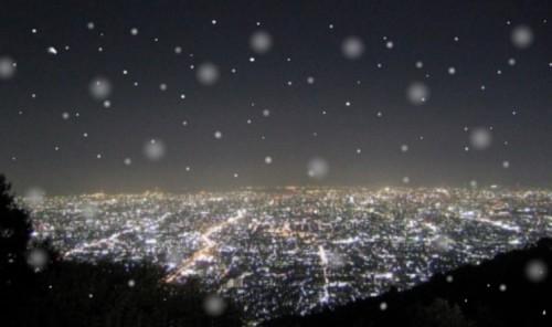 阪奈道路からの見慣れた夜景も雪にぼやける